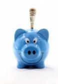 Piggy Bank for Six Months Savings