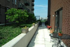 Terrace still